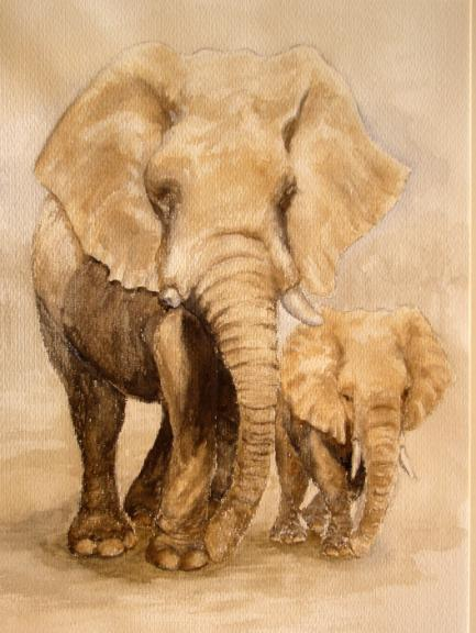 watercolour animal painting - african elephants - mother and baby