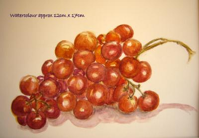 watercolour still life moscatel grapes