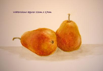 watercolour still life - 2 pink pears