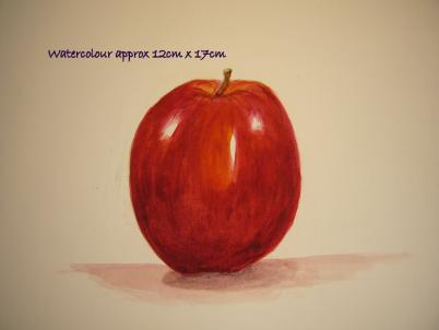 watercolour still life red apple